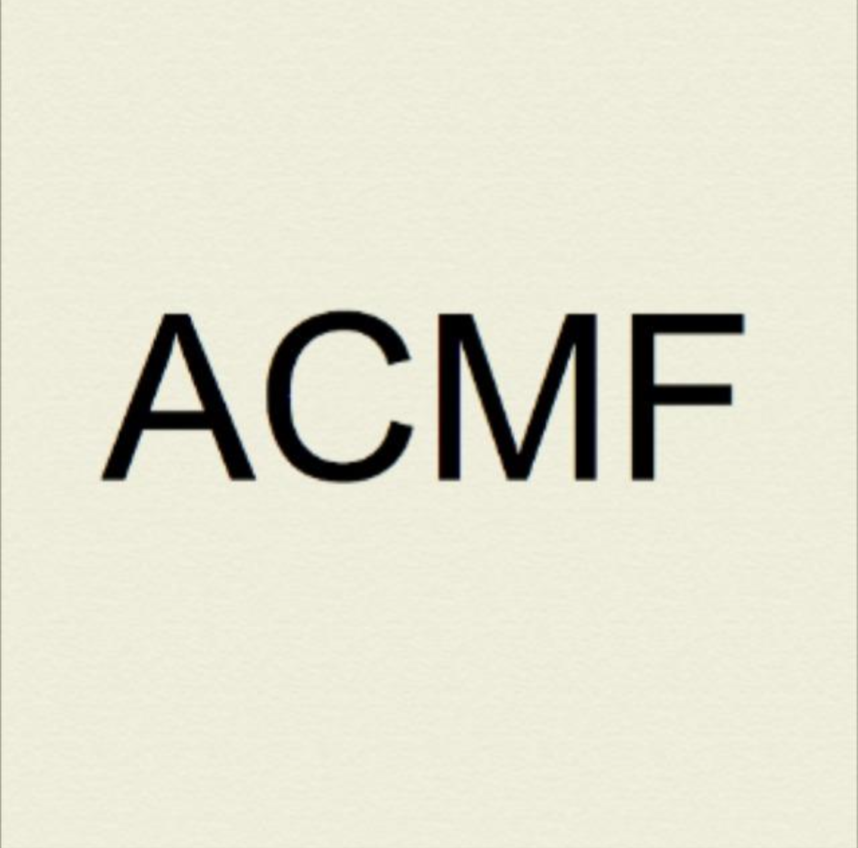 PIERLUIGI PIETRONIRO - ACMF